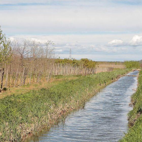 Regant la plana agrícola