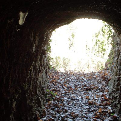 Interior mina