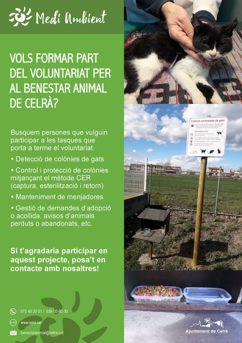 Vols ser voluntari per al benestar animal de Celrà?