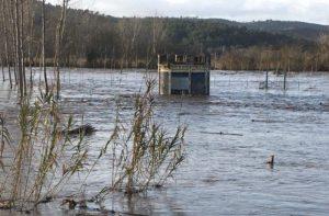 Imatge del pou Nòria inundat