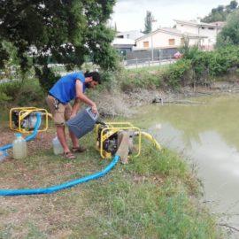 Buidatge de la bassa de can Marturi